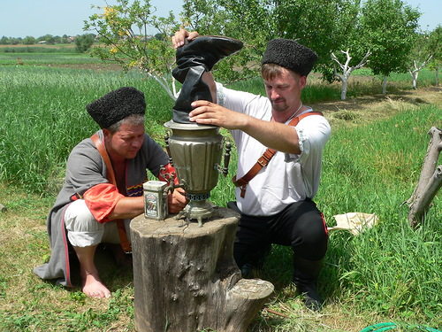 Иван-чай против алкоголя